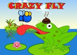 Download Crazy Fly